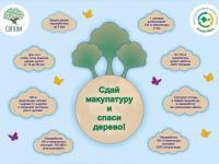 Акция  «Собери макулатуру – спаси дерево и получи саженец»